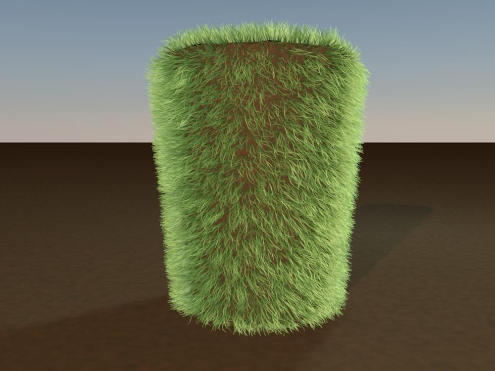Grass Test