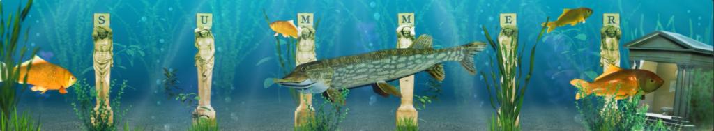 fishes scene